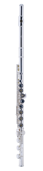 303BEOS Open Hole Flute<br/>Step-Up